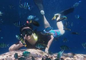 paket opentrip murah snorkling di pulau karimunjawa